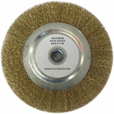 Clarke Replacement 6  Wire Wheel • 15.13£