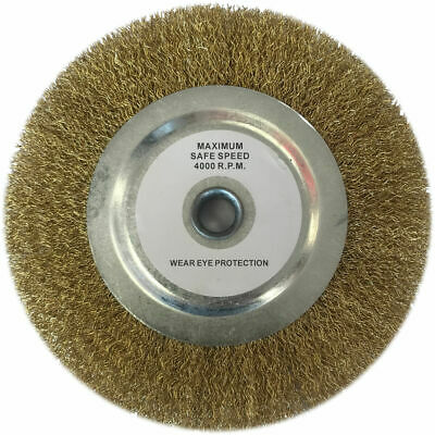 """Clarke Replacement 8"""" Wire Wheel • 18.72£"""